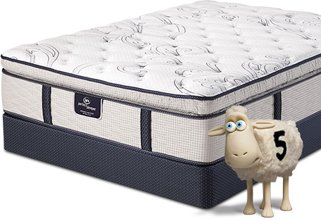 serta mattress sheep. Serta Perfect Sleeper Mattress Sheep
